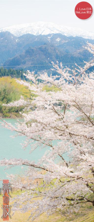湖と桜(立山町白岩ダム)_b0157849_00185715.jpg