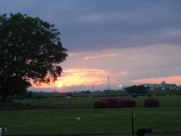 今日もさわやかなお天気♪〜_c0110361_1275651.jpg