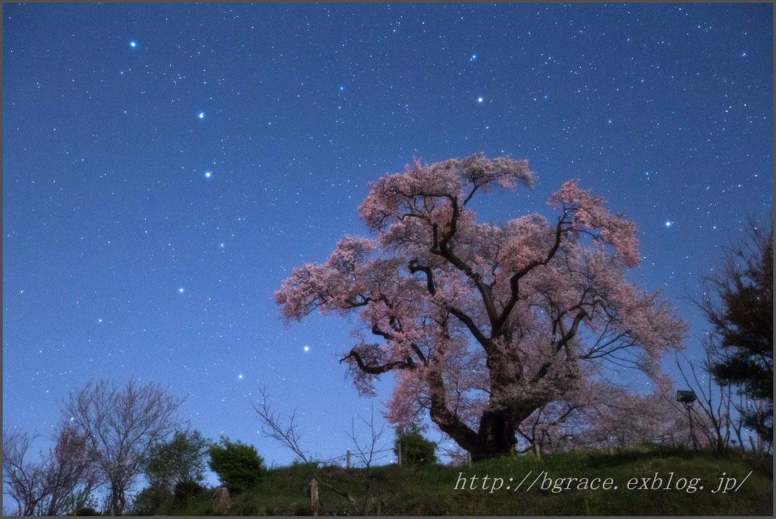 星月夜 _b0191074_2315910.jpg