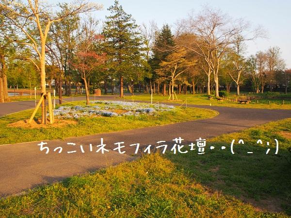 b0092580_2213632.jpg