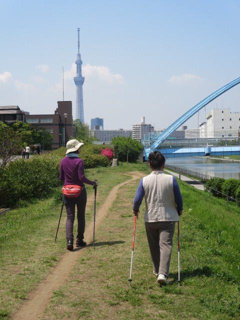 4月26日(土) 初心者講習会&とくかく歩きたい!!_c0222190_1457279.jpg