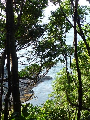 海と岩のひもろぎ_c0222861_050026.jpg