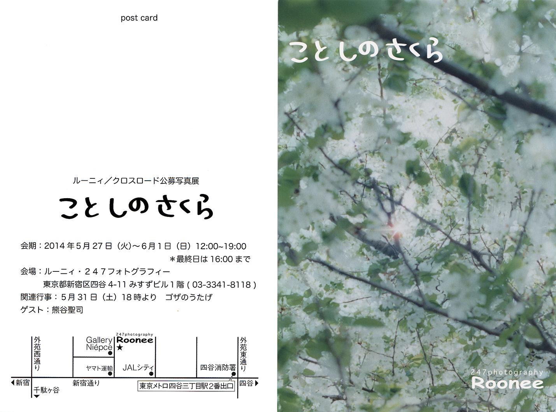 四谷 ルーニィ・247フォトグラフィー 「ことしのさくら」展に出展します_f0121181_23133275.jpg