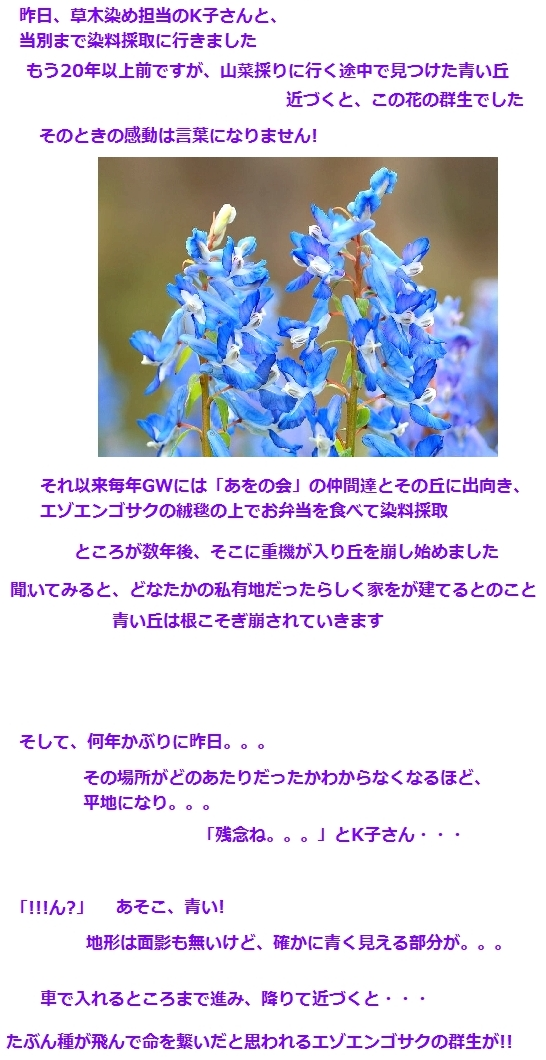 c0221884_23325716.jpg