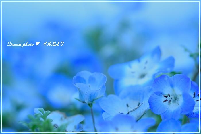 f0304384_142632.jpg