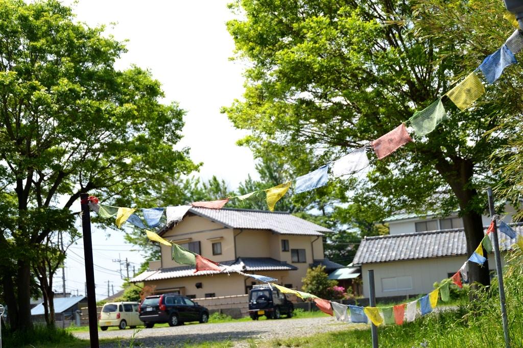 葉山芸術祭 葉山の小道と写真展_d0065116_22615100.jpg