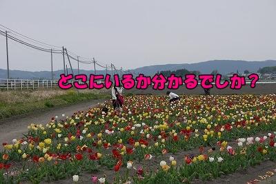 f0326925_23154693.jpg