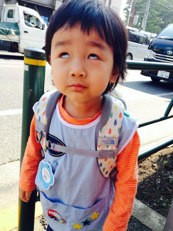 シオン2歳8ヶ月になりました!_e0253026_02922.jpg