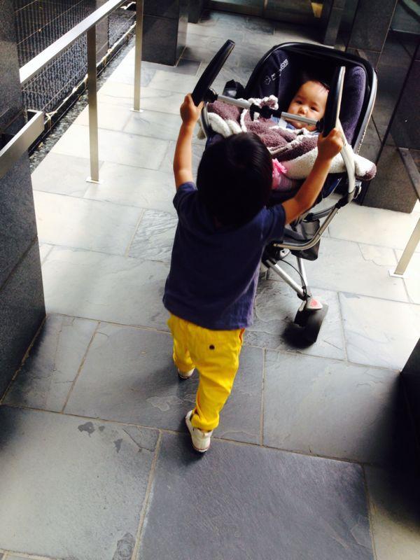 シオン2歳8ヶ月になりました!_e0253026_029545.jpg