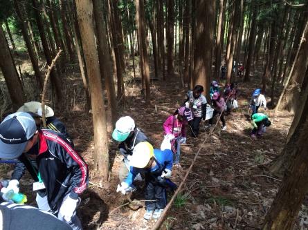 GWキャンプ二日目【山菜採り】_f0101226_07252391.jpg