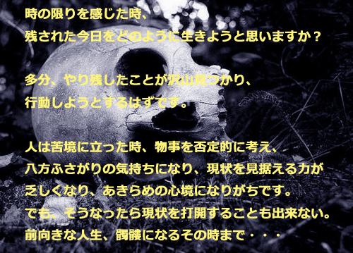 c0306635_19412934.jpg