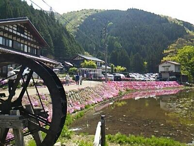 芝桜とお城_a0272042_023156.jpg