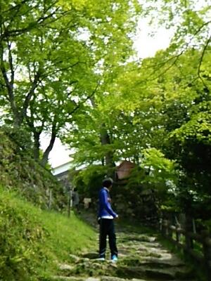 芝桜とお城_a0272042_0392161.jpg