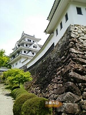 芝桜とお城_a0272042_0404090.jpg