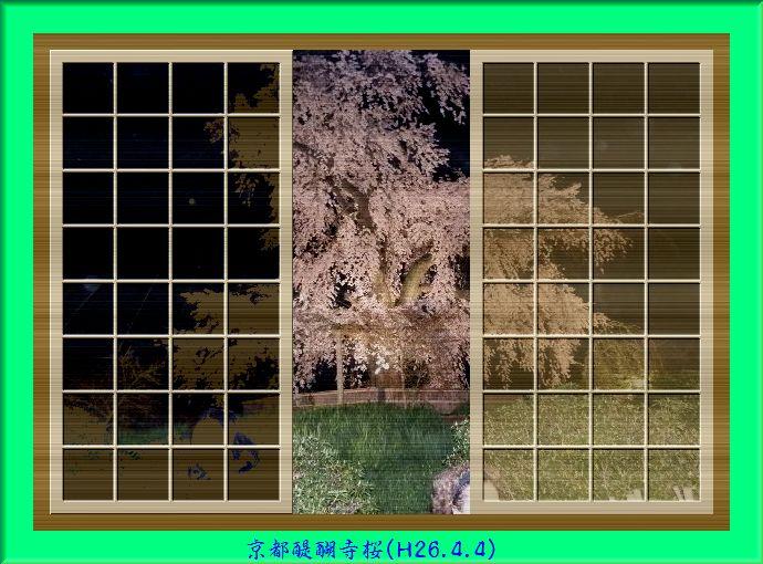 a0212557_1065328.jpg
