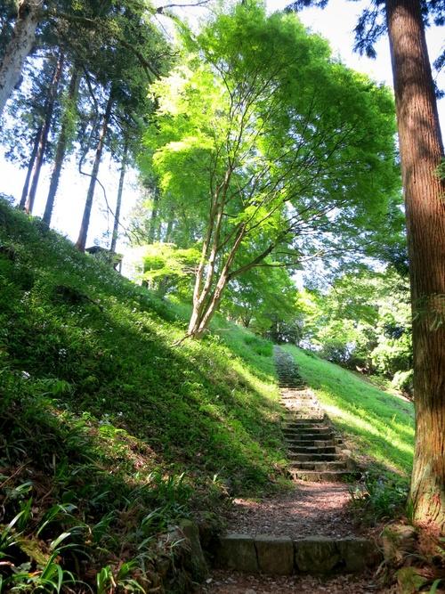 GW限定『森のカフェ』で至福の一杯♥_f0236260_0533398.jpg
