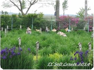 ◆ 「水郷佐原水生植物園」へ (2014年5月)_d0316868_18541440.jpg