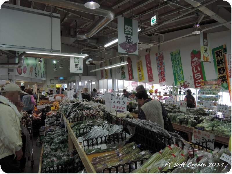 ◆ 「水郷佐原水生植物園」へ (2014年5月)_d0316868_19111192.jpg