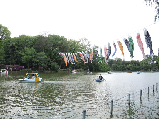 善福寺池のこいのぼり_e0232277_111715100.jpg