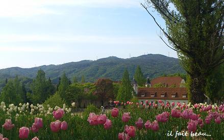 花と緑あふれるヨーロピアンな世界に♪_c0098807_21545855.jpg