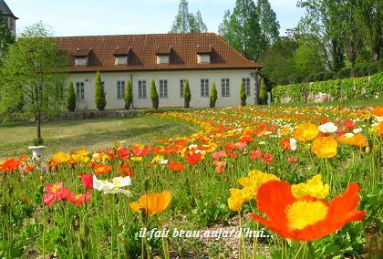 花と緑あふれるヨーロピアンな世界に♪_c0098807_21582595.jpg