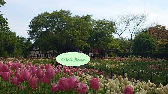 花と緑あふれるヨーロピアンな世界に♪_c0098807_226950.jpg