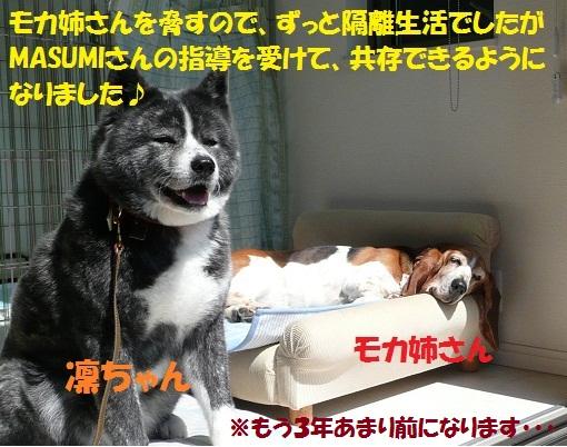 f0121712_13542177.jpg