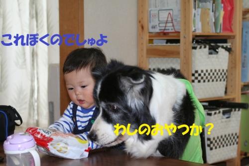 b0085331_16192103.jpg