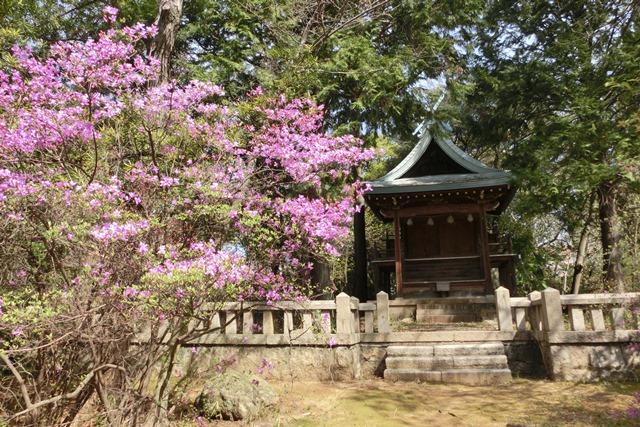 美しい校舎と庭園神戸女学院大学の魅力、大学遺産を観光資源活用、今村岳司市長に期待文化都市大学の利用_d0181492_028184.jpg