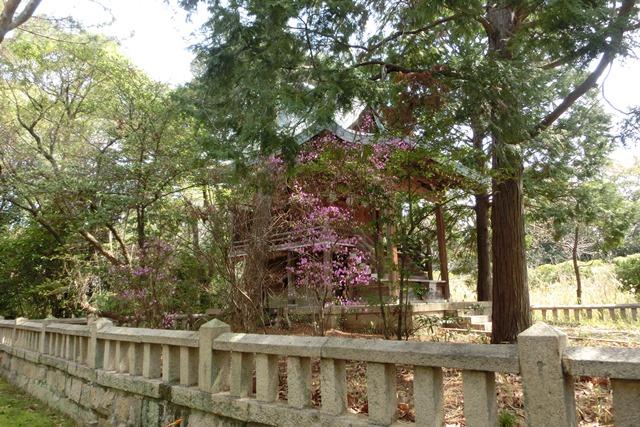 美しい校舎と庭園神戸女学院大学の魅力、大学遺産を観光資源活用、今村岳司市長に期待文化都市大学の利用_d0181492_0284792.jpg