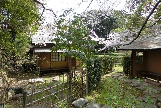美しい校舎と庭園神戸女学院大学の魅力、大学遺産を観光資源活用、今村岳司市長に期待文化都市大学の利用_d0181492_0395022.jpg