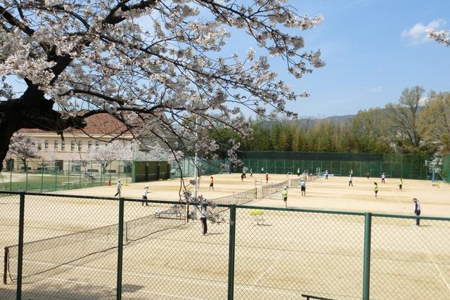 美しい校舎と庭園神戸女学院大学の魅力、大学遺産を観光資源活用、今村岳司市長に期待文化都市大学の利用_d0181492_040746.jpg