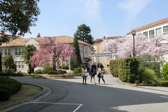 神戸女学院関西学院大学を文化都市遺産に、今村岳司市長大学の有効活用を、西宮市は大学文化が観光資源_d0181492_14511084.jpg