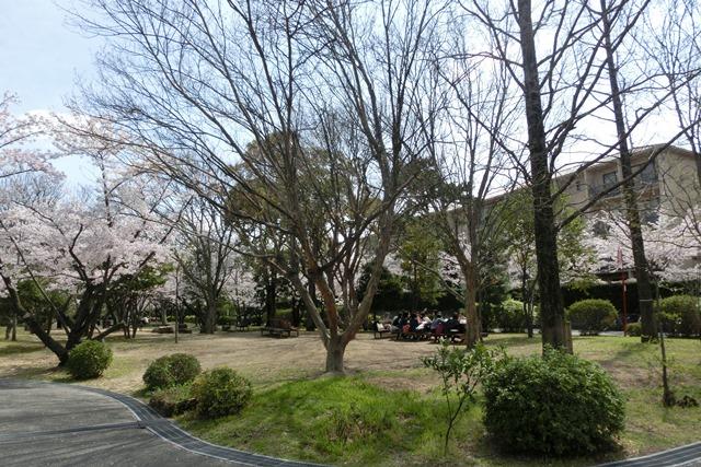 神戸女学院関西学院大学を文化都市遺産に、今村岳司市長大学の有効活用を、西宮市は大学文化が観光資源_d0181492_14512781.jpg