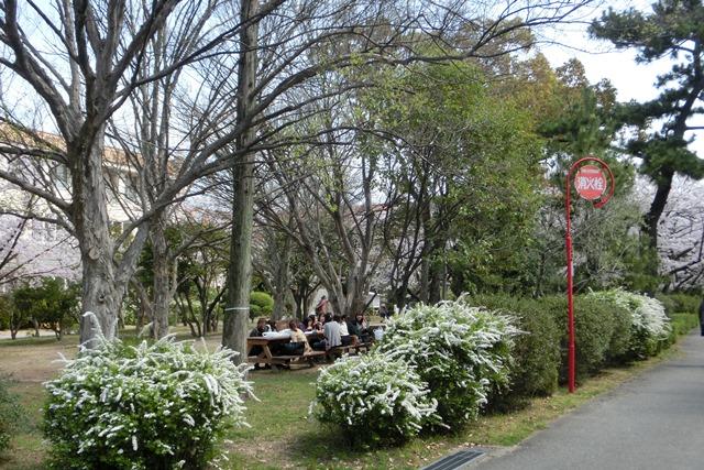 神戸女学院関西学院大学を文化都市遺産に、今村岳司市長大学の有効活用を、西宮市は大学文化が観光資源_d0181492_14521433.jpg