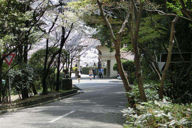今村岳司市長に期待名門大学の有効利用、素敵な神戸女学院に期待、憧れの神戸女学院大学の教育環境_d0181492_150467.jpg