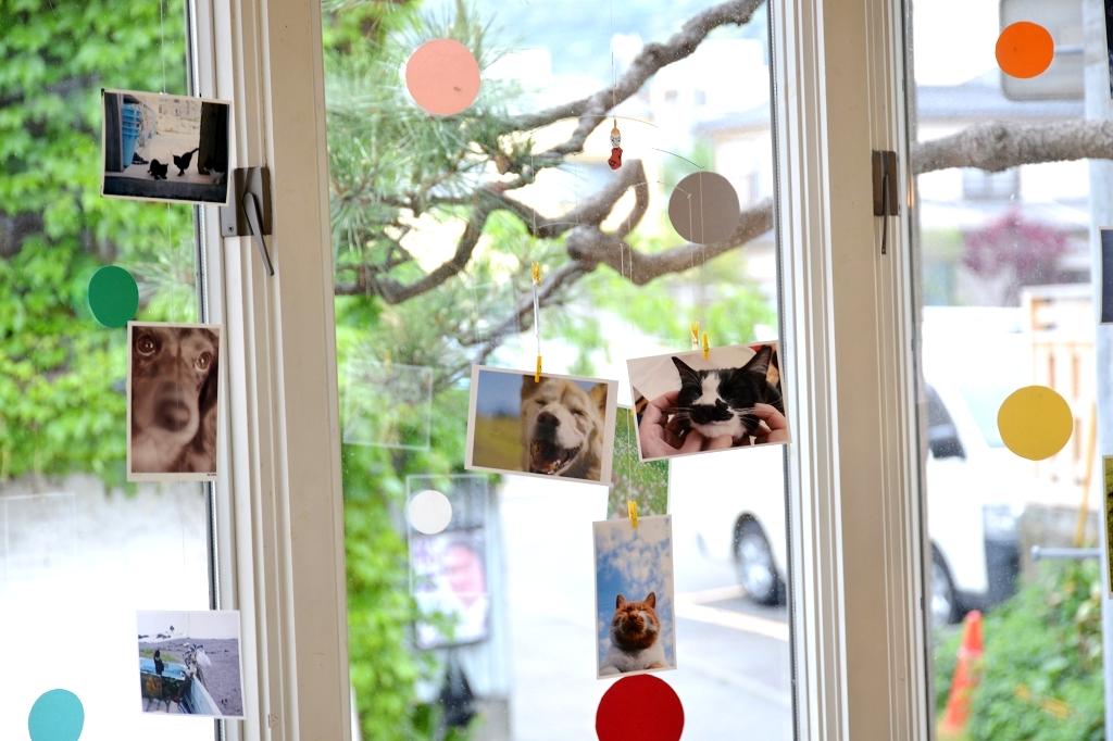 葉山芸術祭 犬猫時間7_d0065116_22113588.jpg