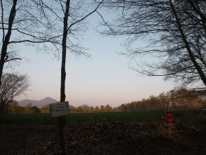 おしぎっぱの森へ_b0174425_1837215.jpg