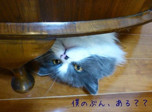 北海道物産展 「ふらの牛乳プリン」_e0237625_1755592.jpg