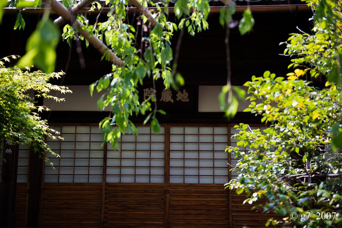 地蔵院(椿寺)..._f0152550_2314172.jpg