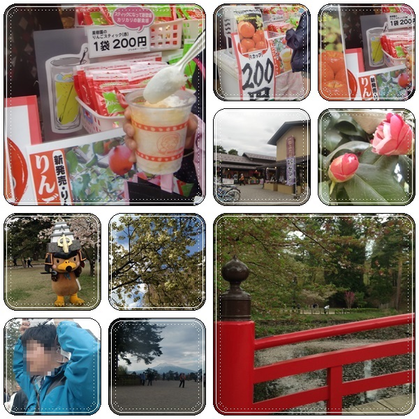 弘前城の桜_b0236665_1219228.jpg