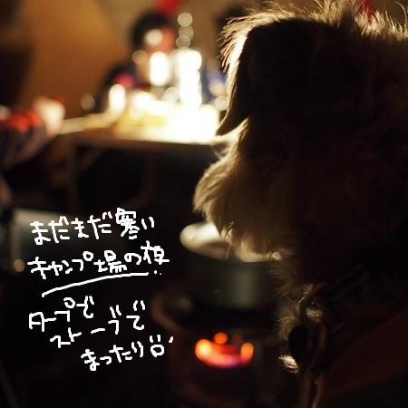 b0092580_383969.jpg