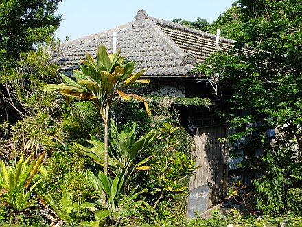 沖縄4日目  (最終日)_e0146484_20581582.jpg