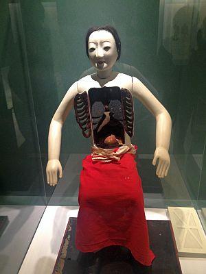 国立科学博物館「医は仁術展」   その1_a0163788_20522191.jpg