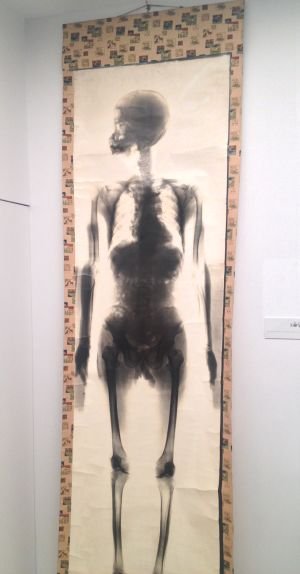 国立科学博物館「医は仁術展」   その1_a0163788_2111348.jpg