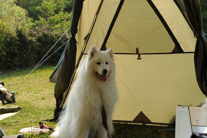 うどんキャンプ in五色台 part3_a0049296_1929344.jpg