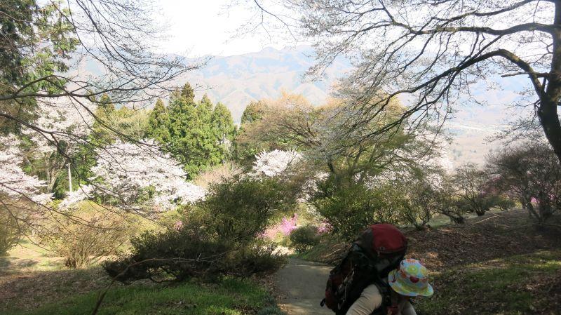 お花見ハイク in 長瀞!_b0133032_22514618.jpg