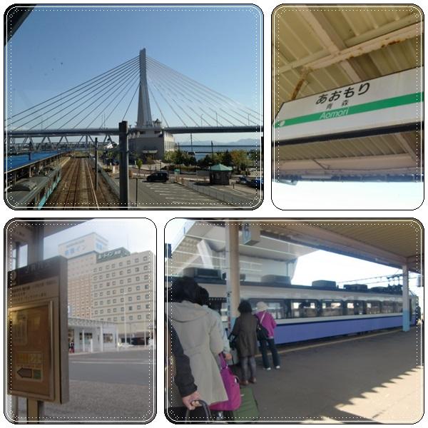 松前城・五稜郭の桜_b0236665_103448.jpg