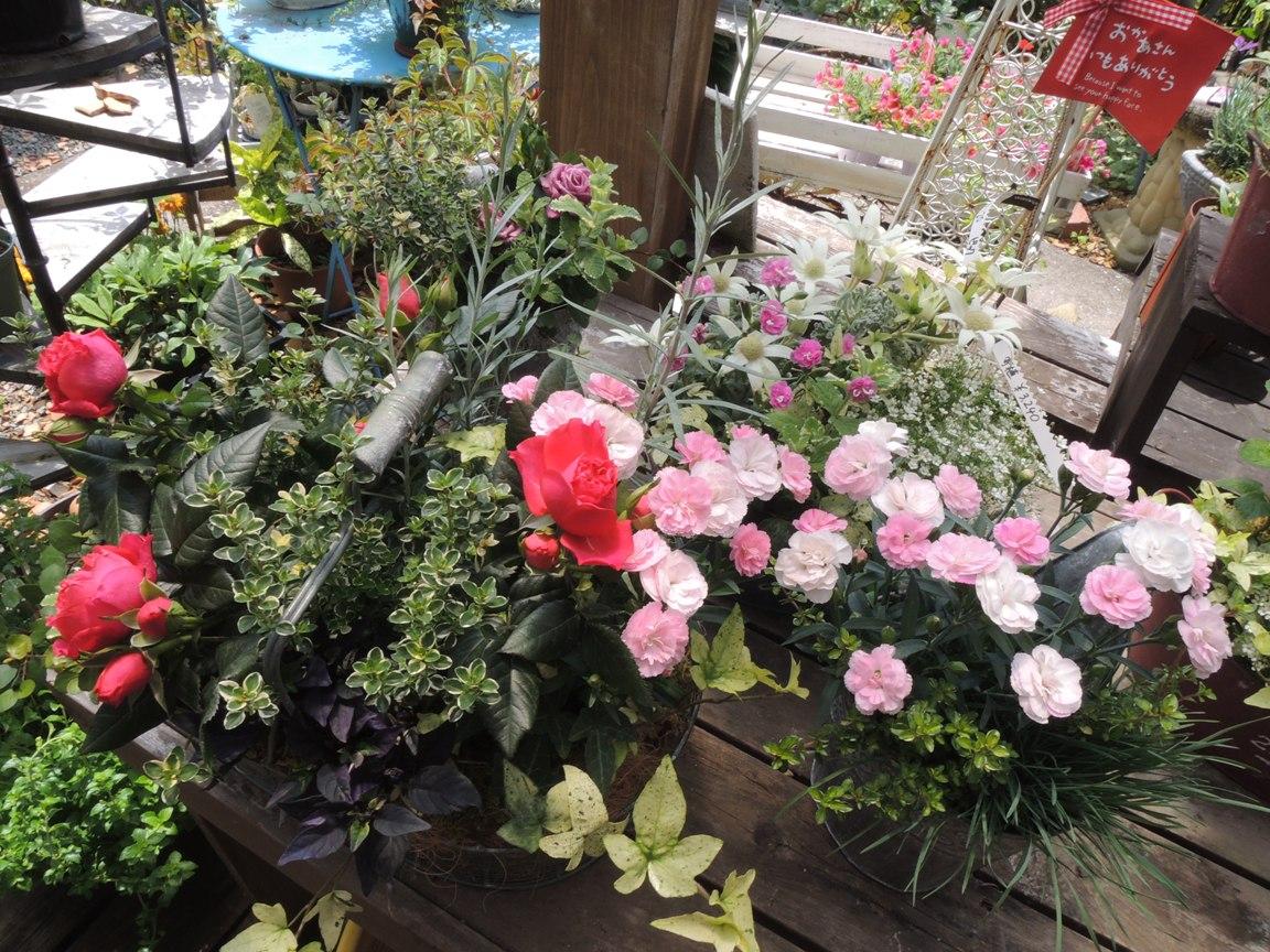 母の日・・・・・とびっきりのお花を贈りましょう!!_b0137969_1114826.jpg