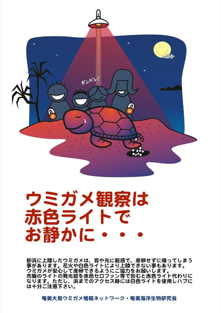 5/10 第12回奄美大島ウミガメミーティング開催のお知らせ_a0010095_23495147.jpg